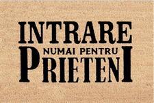 Covoras intrare Heinner HR-MTC-FAMP, 60 x 40 cm, Friends (Maro)